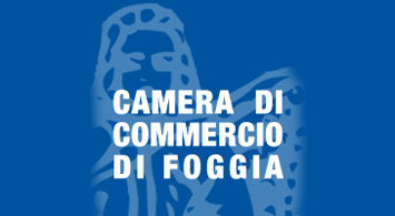 camera-commercio-good
